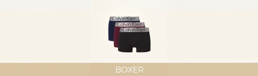 Buy Boxers CK Calvin Klein | All articles at Le-Bourgeois